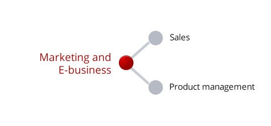 Marketing and E-business