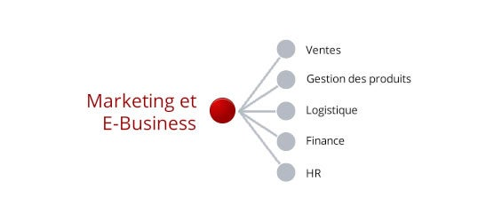 Marketing & E-business