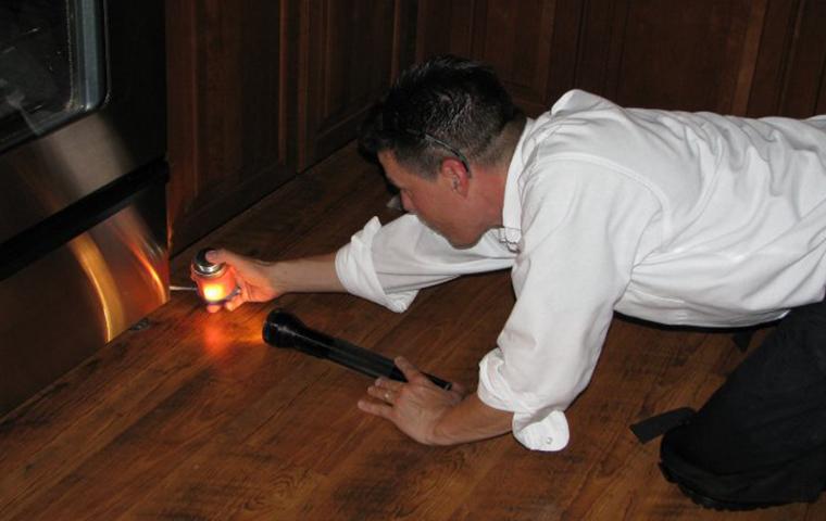tech treating a house
