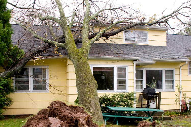 Does Homeowners Insurance Cover Roof Damage After a Storm In Tennessee