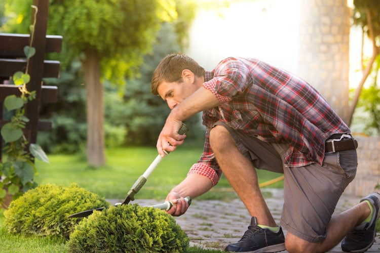 Tennessee Landscapers Insurance
