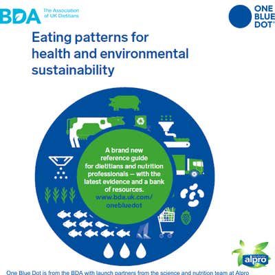 BDA OBD®  Reference guide: Eating patterns for health and environmental sustainability