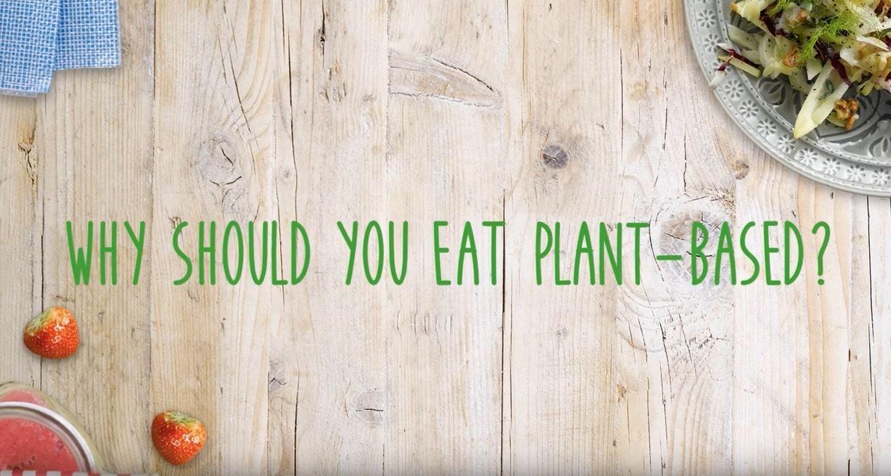 Video: Waarom plantaardig eten?