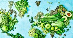 Reduktion des ökologischen Fußabdrucks durch eine pflanzenbetonte Ernährung