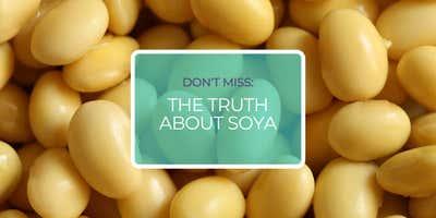 La vérité sur le soja. Le Dr Mark Messina PhD MS  partage son expertise dans ce webinaire