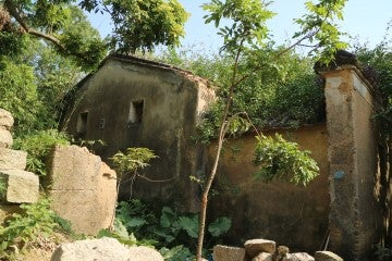 Stanley Hunt's ancestral home in Mashan was abandoned (2017)