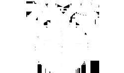 AVS Light Logo 1.png