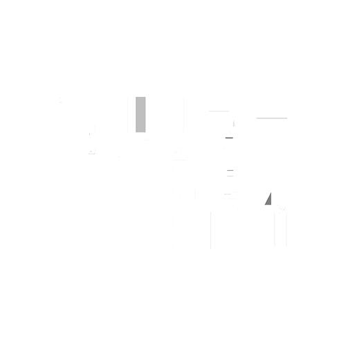 HPI Light Logo.png