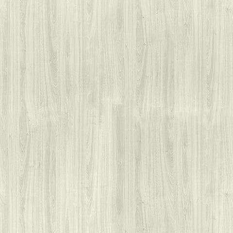 Image of L31-White-Nebbia.jpg