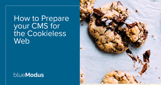 How to Prepare your Website for the Cookieless Web