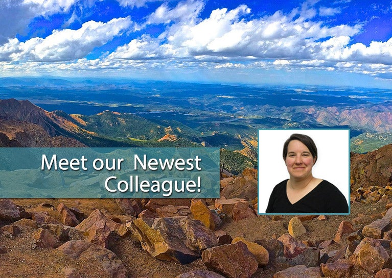 Solution Delivery Team Adds Development Talent