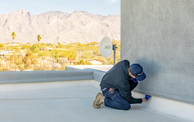 technician inspecting an exterior of a building