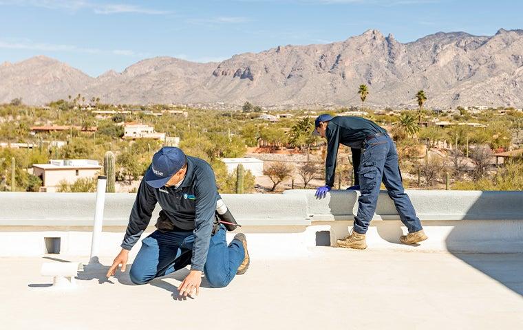 pest control technicians at a home