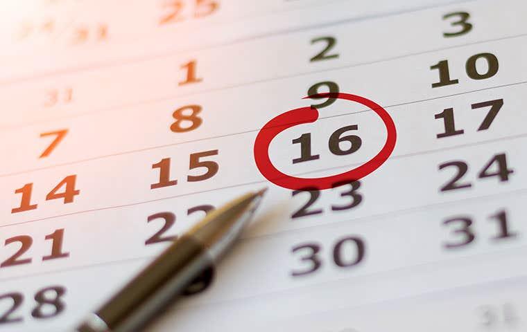date marked on calendar