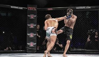 Vítejte v boji aneb Fenomén MMA