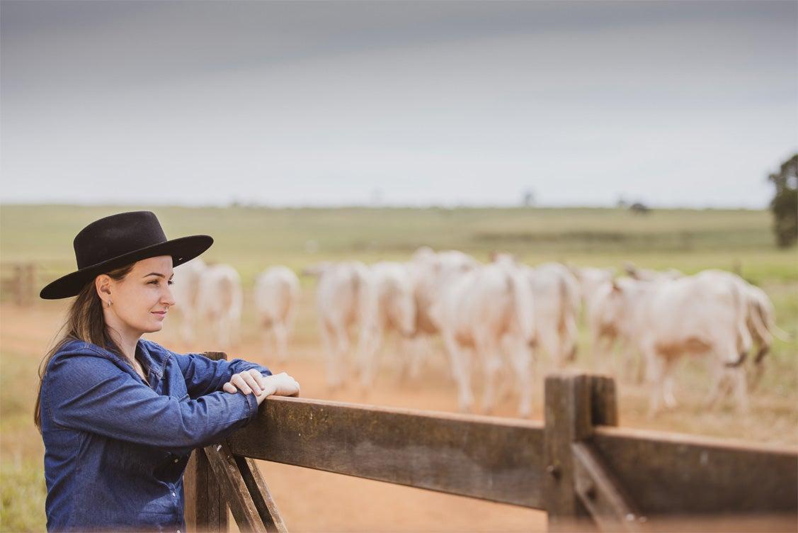 Pecuarista observando o rebanho de gado pastando no campo.