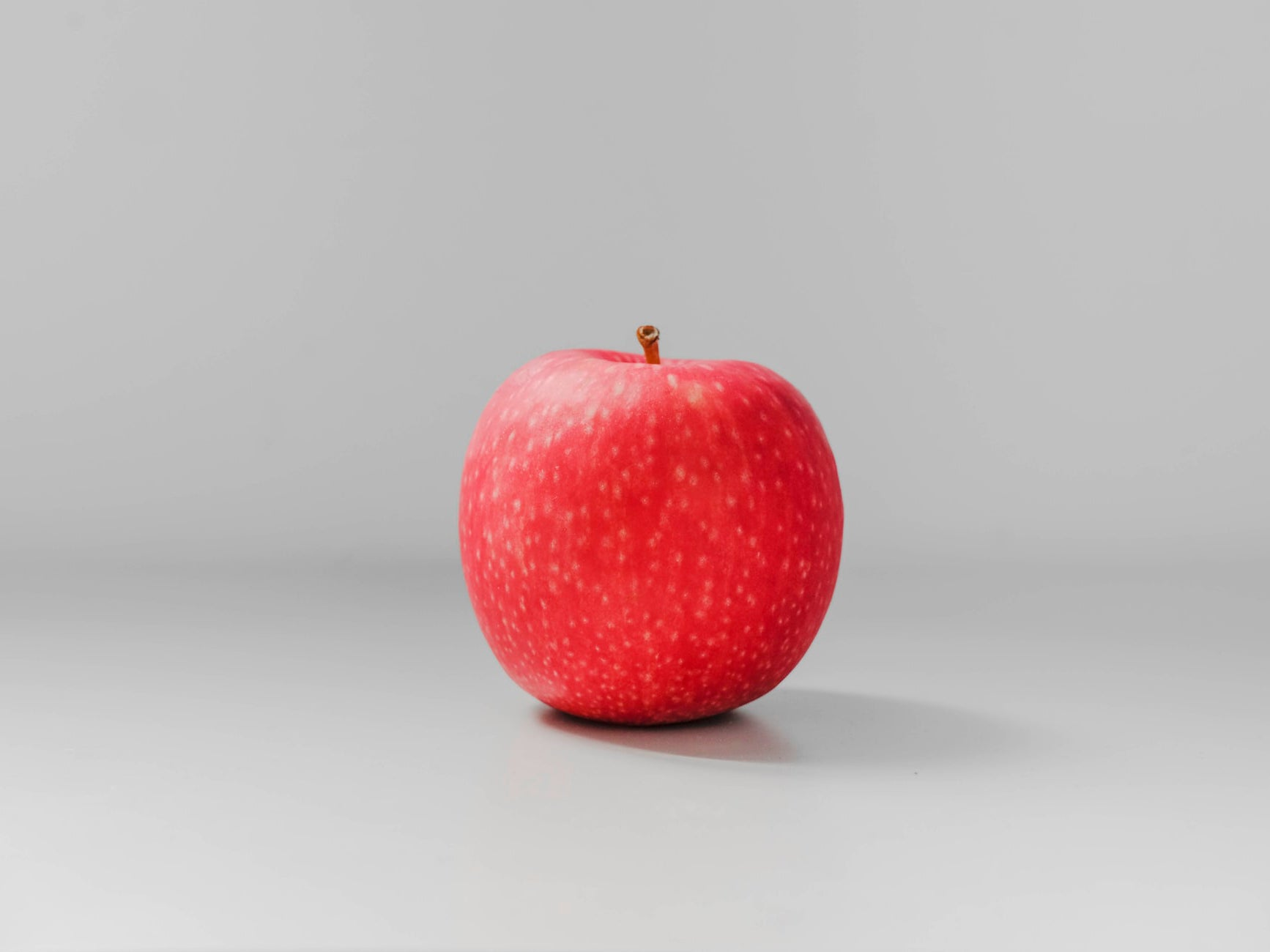 Single apple grey background
