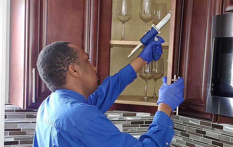 em pest control technician applying treatment to kitchen cabinets