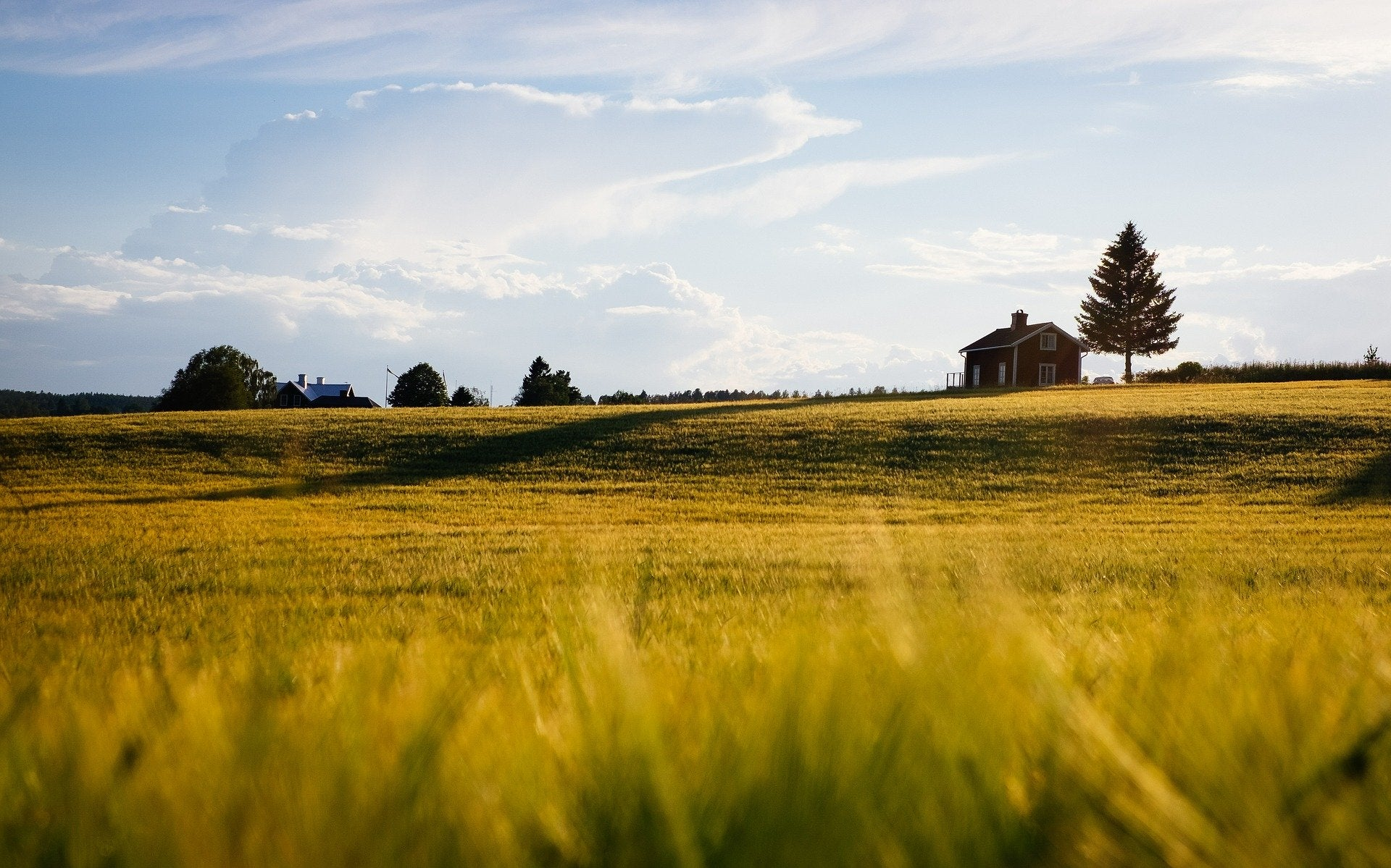 Buying and selling rural property in Queensland