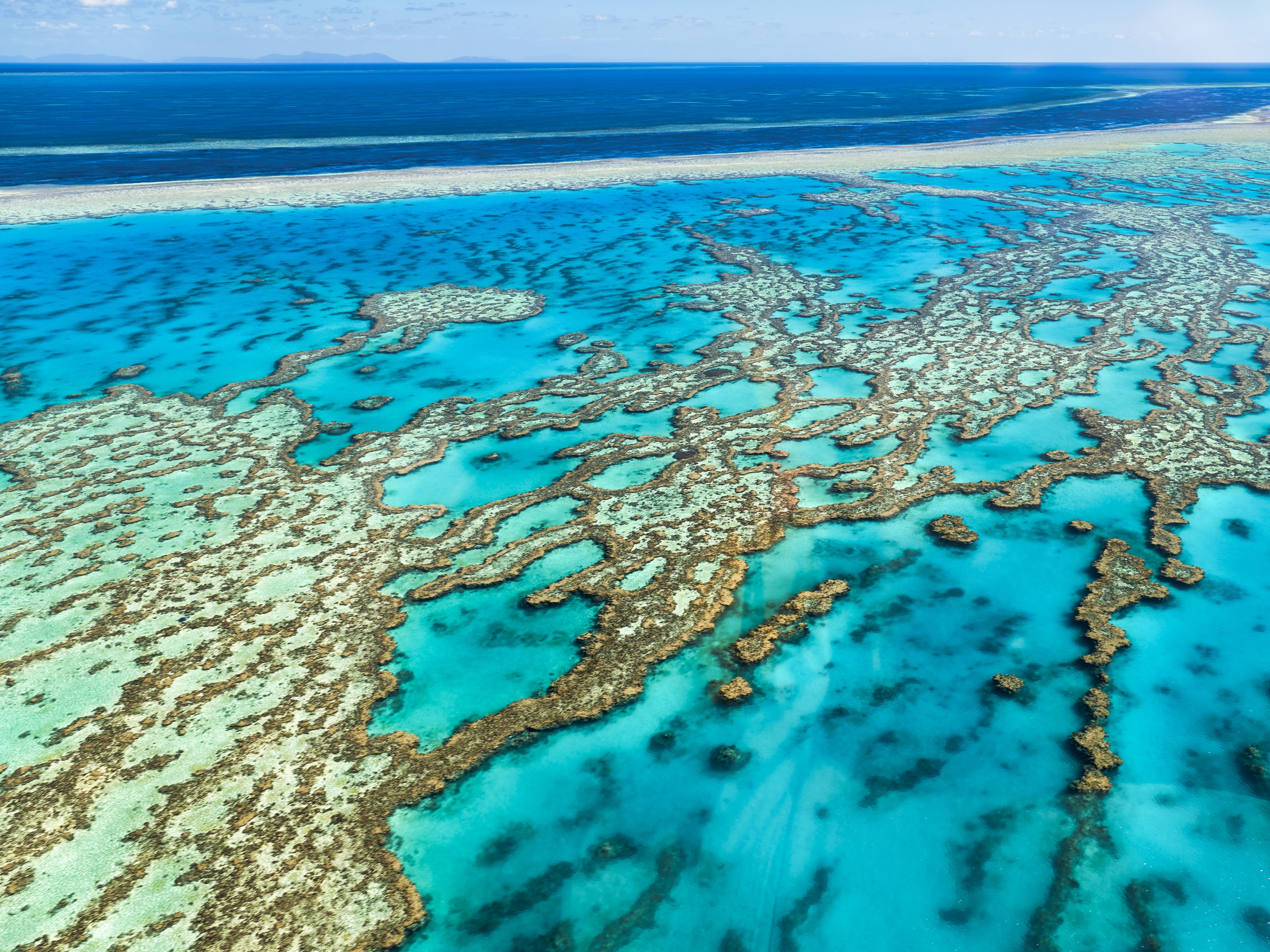 Updates to Queensland's Reef Protection Regulations: What your industry needs to know