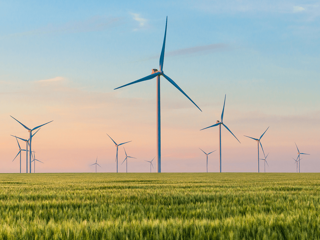 Are wind farms a nuisance?
