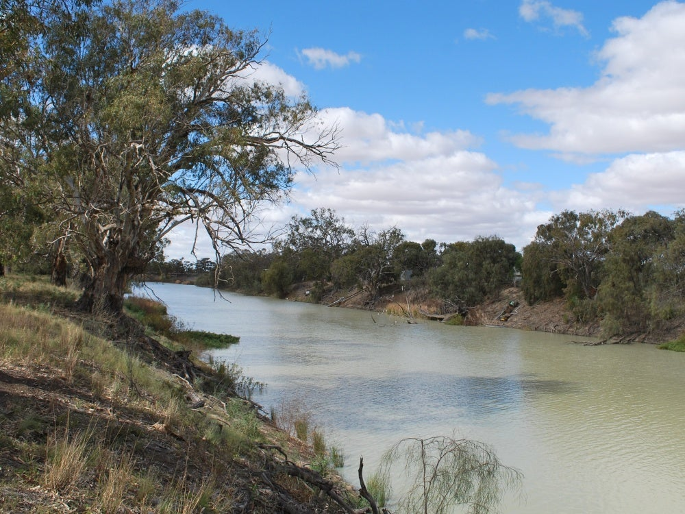 Royal Commission finds Murray-Darling Basin Plan partly unlawful