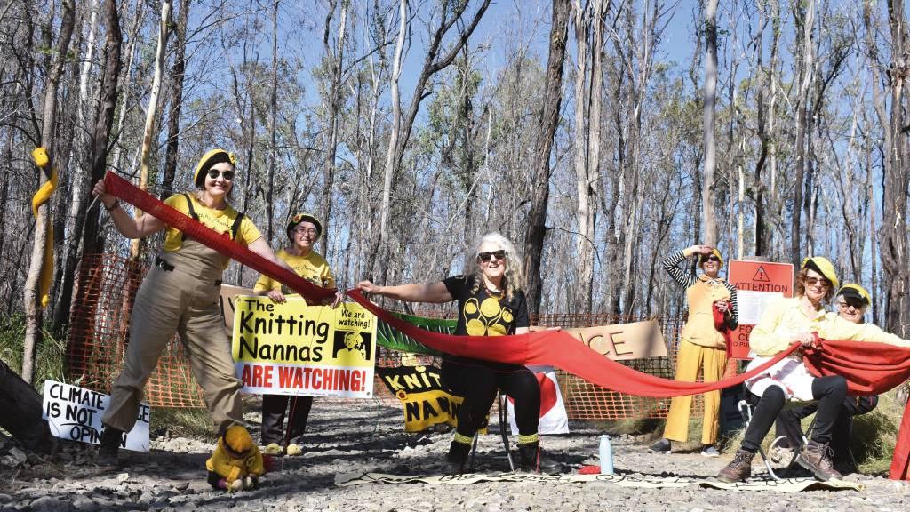 The Knitting Nannas in action at a protest against logging in the Myrtle State Forest in northern NSW.