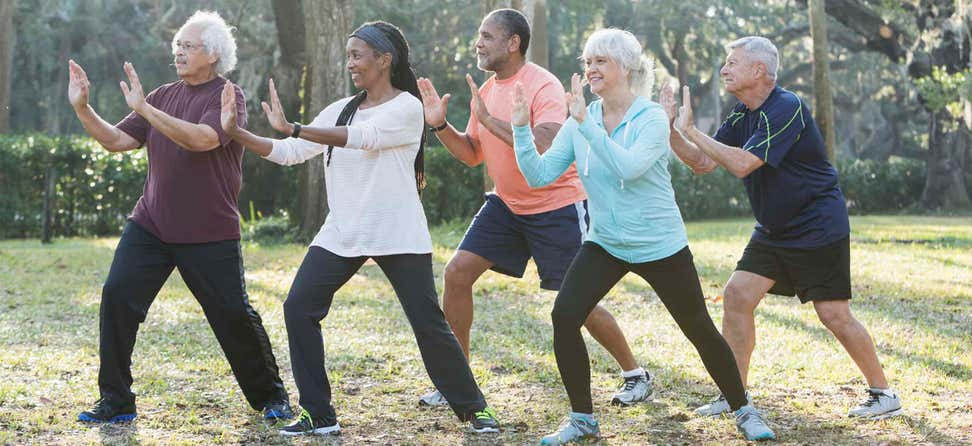 A multi-ethnic group of seniors are taking Tai Chi class outdoors.