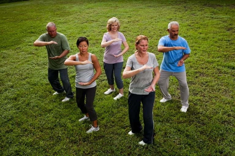 diverse-group-of-elders-practicing-tai-chi outdoors on grass