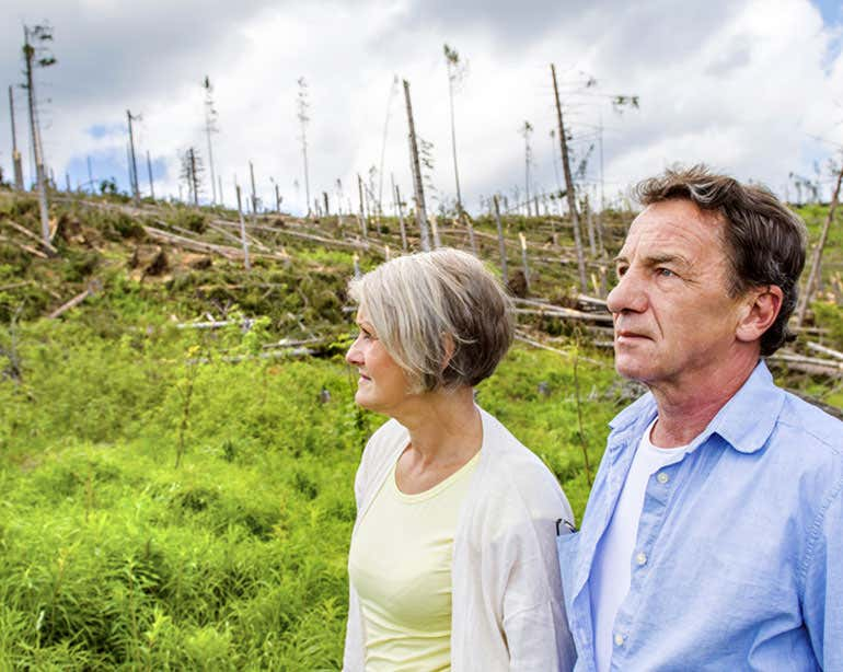A senior Caucasian couple are seen surveying tree damage after a storm hit their area.