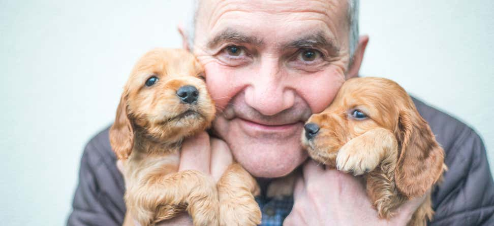 A senior Caucasian man is holding two puppies near his face, smiling with joy.