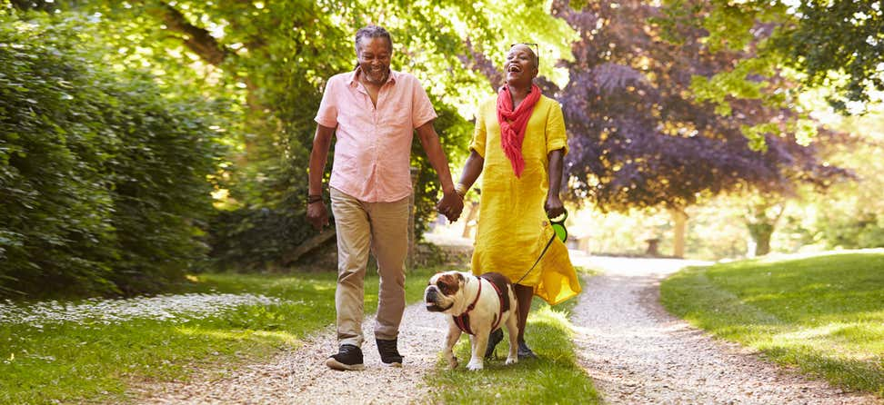 A senior Black couple is walking their bulldog in the park, laughing while enjoying nature.