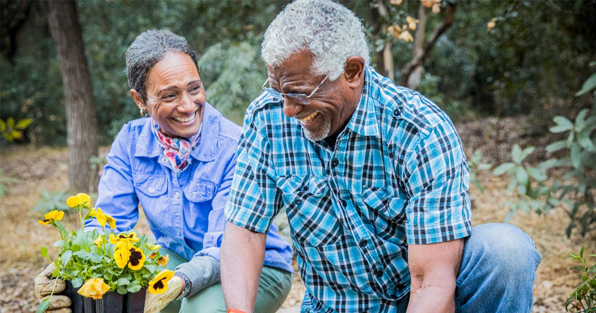 A senior retired Black couple is enjoying time together in their garden.