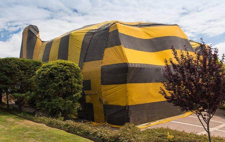 a house under fumigation in lake worth florida